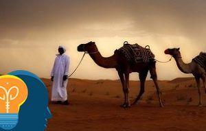 Acertijo del camello