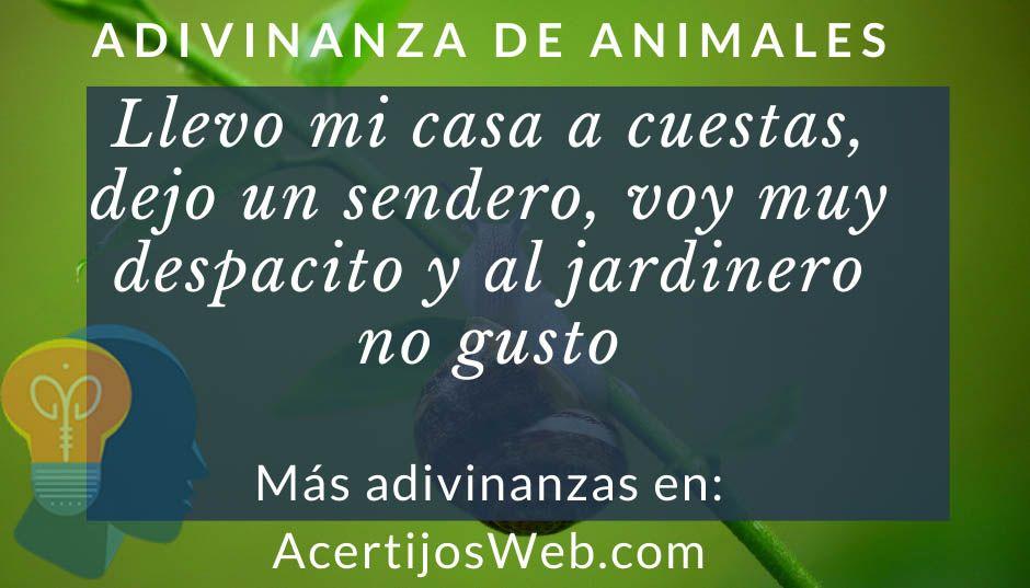 adivinanzas de animales para niños